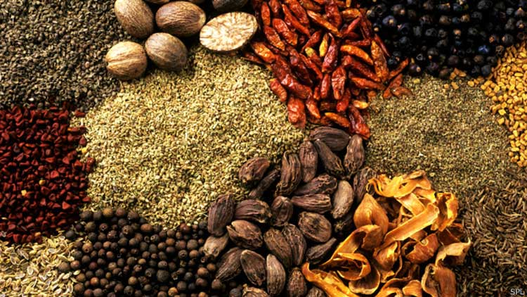Cocina Chef Prehistórica – ¿Cuáles eran los condimentos más antiguos?