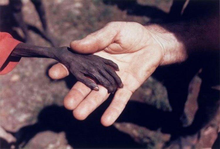 Cristianos-no-nos-olvidemos-que-todavia-hay-hambre-en-el-mundo-y-sed-del-evangelio