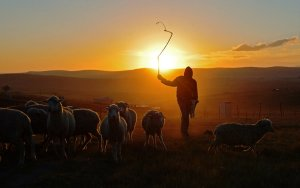20 cosas que muchos pastores no hacen pero deberían