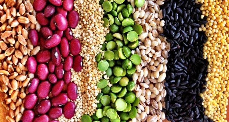 Las dietas Religiosas, los detractores de trigo aún no han declarado la guerra santa contra los detractores de carne