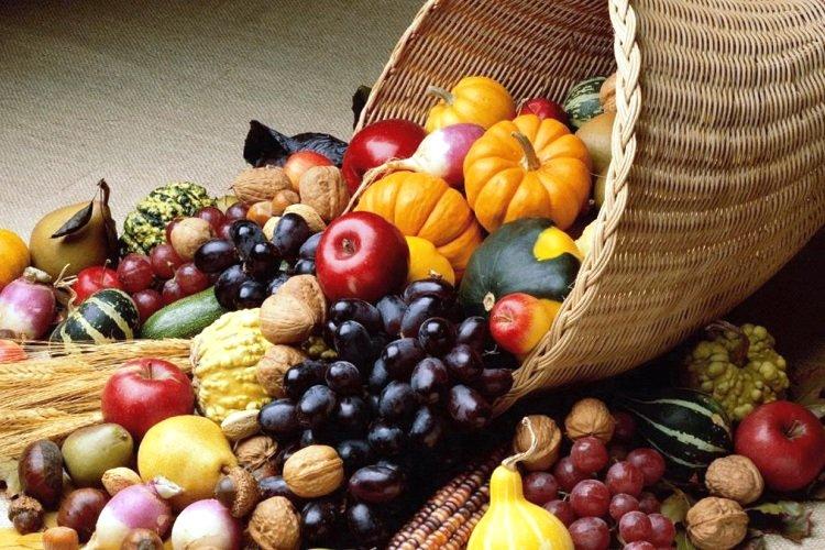 En este Thanksgiving Pare de Idolatrar a los Peregrinos