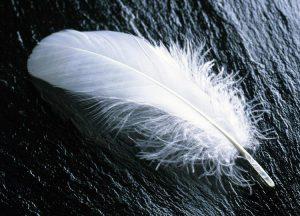 Más prudentes los que creen en el ángel guardián