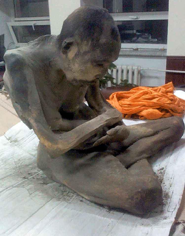 Tiene 200 años, no está muerto, sino en tukdam