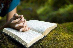 las biblias