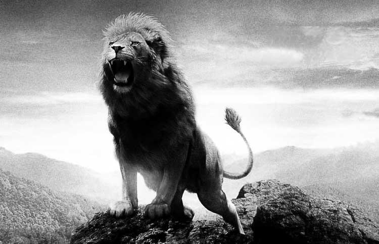 Profecía: Cuando los gaditas suben, caen los Goliats