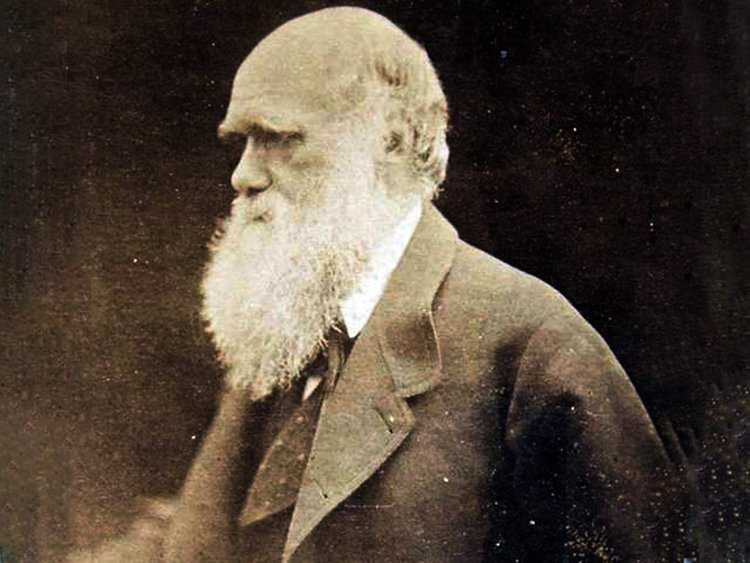Carta de Charles Darwin habla de la Biblia y Jesús