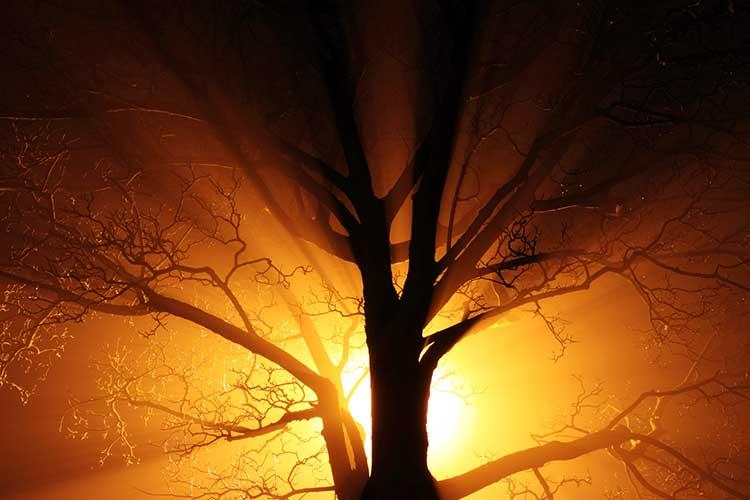 Superar la depresión, un testimonio cristiano