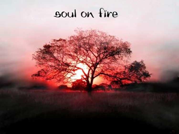 Soul on Fire es nombrada canción cristiana del año