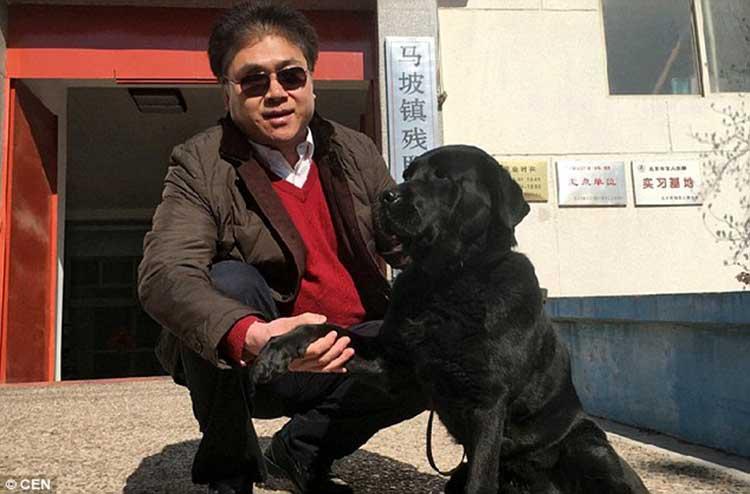 Ladrones devuelven un Perro Guía a hombre ciego
