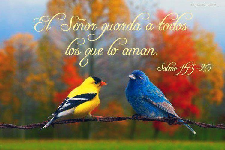 Sitios De Tarjetas Cristianas Gratis En Español Slt