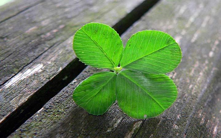 No hay que ser vidente, ni llamarlo suerte - ¡es Dios!