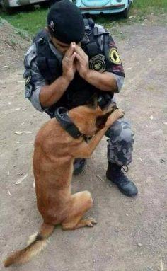Perro y Hombre rescatistas oran antes de su misión
