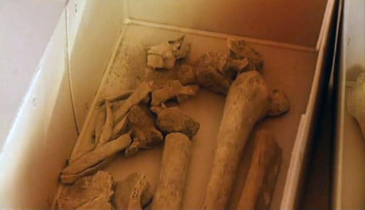 Huesos de Pedro - son hallados en pequeña iglesia