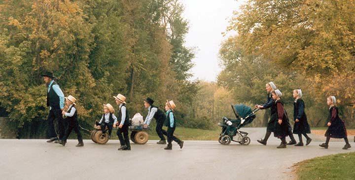 Mutación genética ayuda a las familias Amish luchar contra el envejecimiento, la diabetes e incluso la calvicie