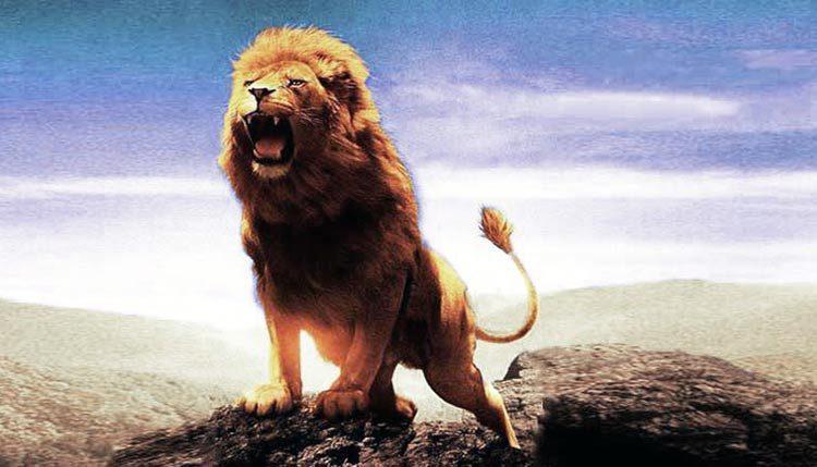 León en la Biblia - 7 textos y su significado